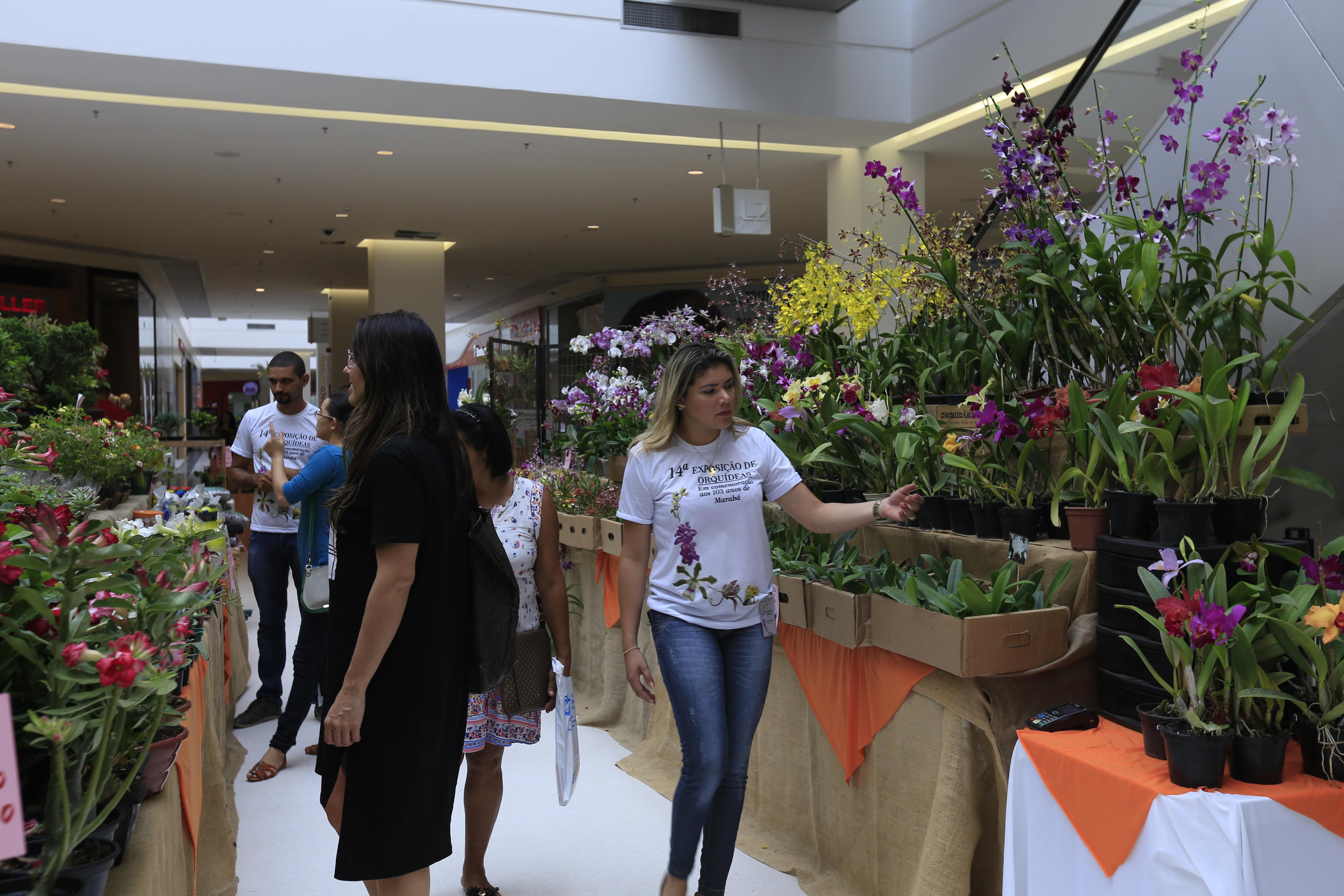 CASA DA CULTURA FARÁ 15º EXPOSIÇÃO DE ORQUÍDEAS NO ANIVERSÁRIO DE MARABÁ