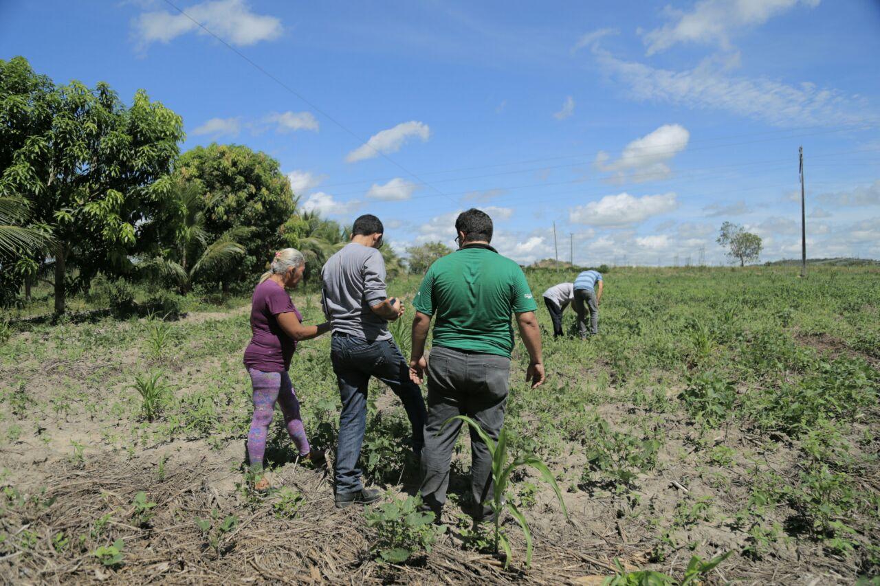 SEAGRI: MECANIZAÇÃO AUXILIA NA PRODUÇÃO DA AGRICULTURA FAMILIAR